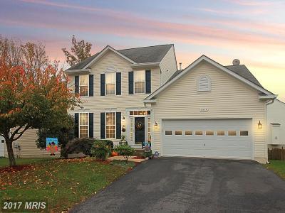 Fredericksburg Single Family Home For Sale: 6217 Hot Spring Lane