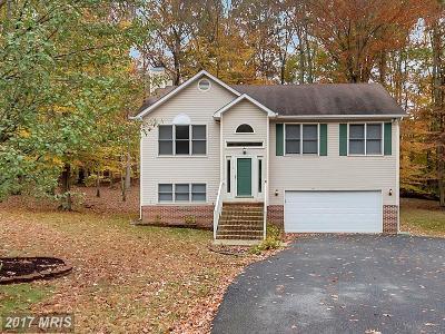 Fredericksburg Single Family Home For Sale: 6412 Forest Grove Drive