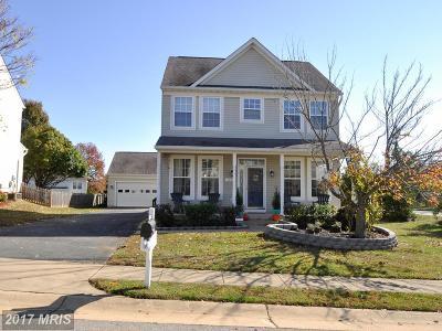Fredericksburg Single Family Home For Sale: 11201 Rose Hill Court
