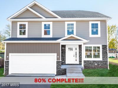 Fredericksburg Single Family Home For Sale: 310 Powell Street