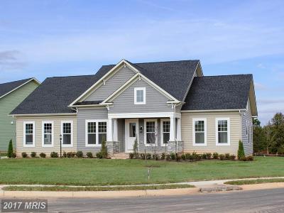 Spotsylvania Single Family Home For Sale: 11619 Robin Woods Circle