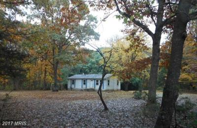 Fredericksburg Single Family Home For Sale: 11829 Burgess Lane