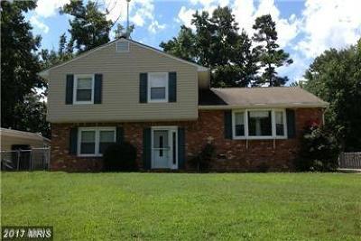 Fredericksburg Single Family Home For Sale: 307 Burman Lane