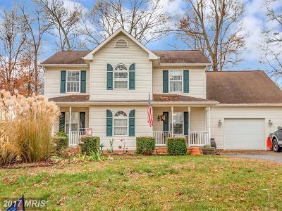 Fredericksburg Single Family Home For Sale: 10112 Sharon Springs Drive