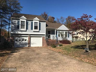 Fredericksburg Single Family Home For Sale: 11720 Roosevelt Road