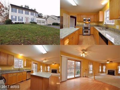 Fredericksburg Single Family Home For Sale: 4004 Mossy Bank Lane