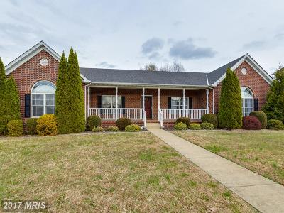 Fredericksburg Single Family Home For Sale: 6913 Tower Of London Drive