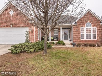 Fredericksburg Single Family Home For Sale: 5414 Joshua Tree Circle