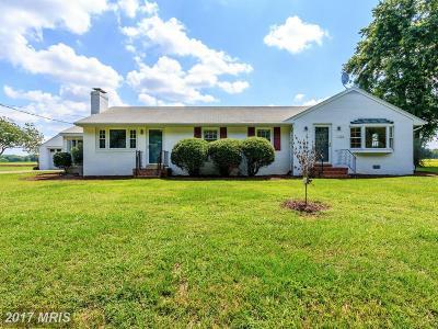 Fredericksburg VA Single Family Home For Sale: $242,500