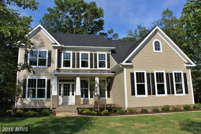 Spotsylvania Single Family Home For Sale: 1 Vintage Lane