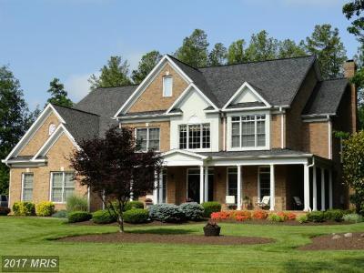 Spotsylvania Single Family Home For Sale: 11410 Little Bay Harbor Way