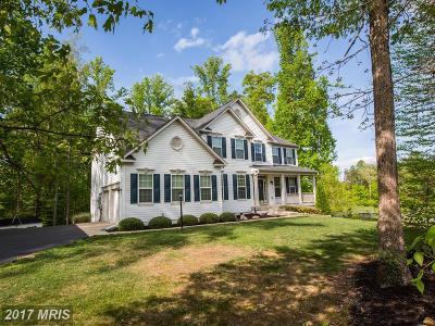 Spotsylvania Single Family Home For Sale: 10032 Willow Ridge Way