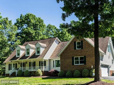 Fredericksburg Single Family Home For Sale: 13913 Last Line Lane