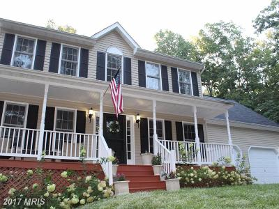 Spotsylvania Single Family Home For Sale: 7925 Lake Anna Parkway