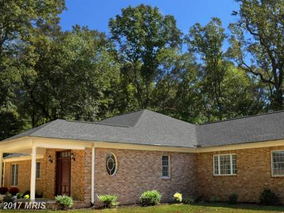Spotsylvania Single Family Home For Sale: 223 Morgan Lane