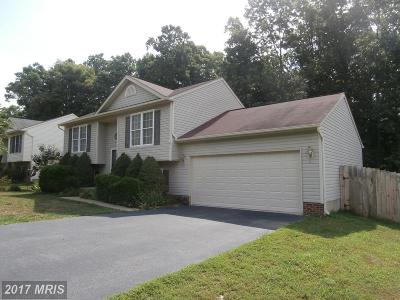 Spotsylvania Single Family Home For Sale: 6820 Silverbrook Drive