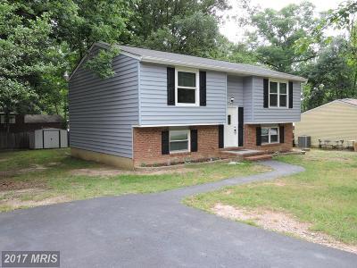 Fredericksburg Rental For Rent: 5523 Tallow Street