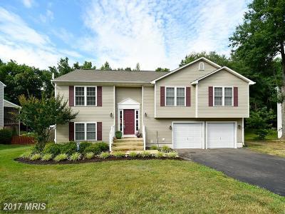 Fredericksburg Single Family Home For Sale: 3604 Ardwick Circle