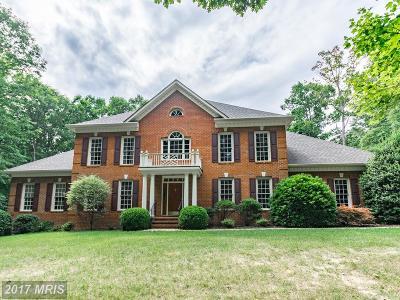 Fredericksburg Single Family Home For Sale: 9011 Campbacks Court