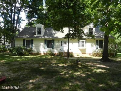 Fredericksburg Single Family Home For Sale: 10619 Buckingham Drive