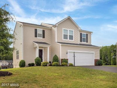 Fredericksburg Single Family Home For Sale: 30 Hopkins Branch Way