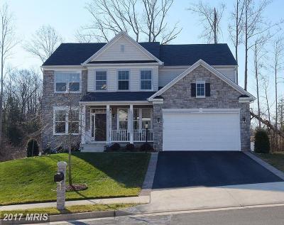 Fredericksburg Single Family Home For Sale: 23 Berea Knolls Drive