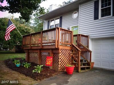 Stafford Single Family Home For Sale: 112 Coal Landing Road