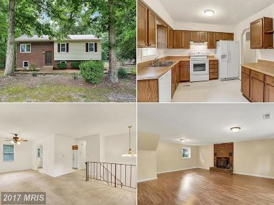 Stafford Single Family Home For Sale: 119 Jib Drive