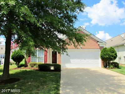 Fredericksburg Single Family Home For Sale: 17 Brunswick Court