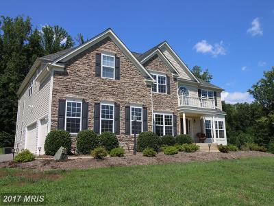 Fredericksburg Single Family Home For Sale: 17 Wentworth Drive