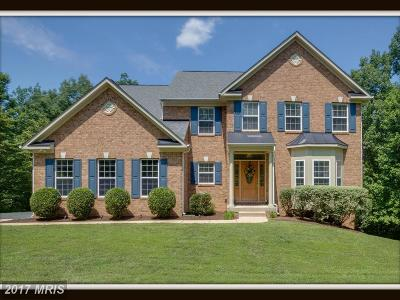 Fredericksburg Single Family Home For Sale: 390 Gentle Breeze Circle