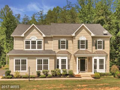 Fredericksburg Single Family Home For Sale: 360 McPherson Drive