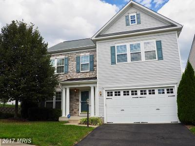 Fredericksburg Single Family Home For Sale: 60 Carriage Hill Drive