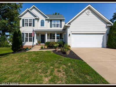 Fredericksburg Single Family Home For Sale: 44 Walnut Farms Parkway