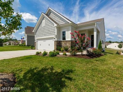 Fredericksburg Single Family Home For Sale: 166 Denison Street