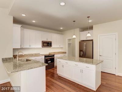 Fredericksburg Single Family Home For Sale: 345 Phillips Street