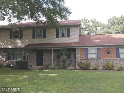 Fredericksburg Single Family Home For Sale: 601 Cumberland Road