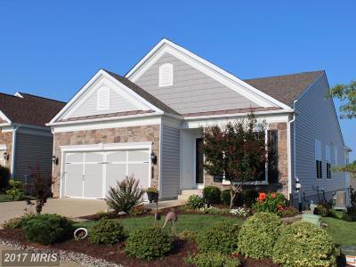 Fredericksburg Single Family Home For Sale: 7 Brant Court