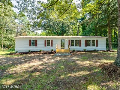 Fredericksburg Single Family Home For Sale: 162 Clark Patton Road