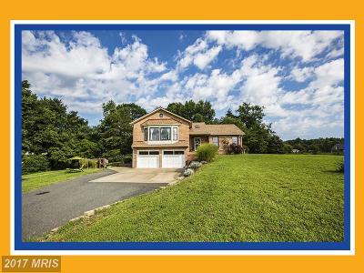Fredericksburg Single Family Home For Sale: 66 England Run Lane