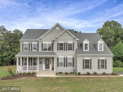 Fredericksburg Single Family Home For Sale: 65 McPherson Drive