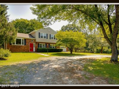 Fredericksburg Single Family Home For Sale: 525 McCarty Road