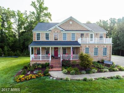 Fredericksburg Single Family Home For Sale: 73 Royal Hills Drive