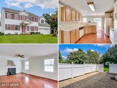 Fredericksburg Single Family Home For Sale: 5 Cannon Ridge Drive
