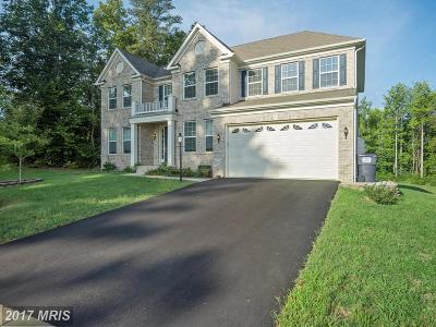 Fredericksburg Single Family Home For Sale: 29 Berea Knolls Drive