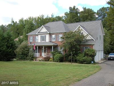 Fredericksburg Single Family Home For Sale: 21 Johnson Mill Ridge