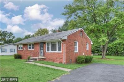 Fredericksburg Single Family Home For Sale: 807 Jett Street