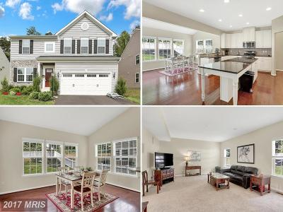 Fredericksburg Single Family Home For Sale: 12 Clear Spring Lane
