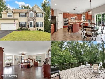 Fredericksburg Single Family Home For Sale: 23 Towering Oaks Drive