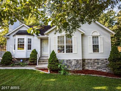 Fredericksburg Single Family Home For Sale: 21 Brentwood Lane